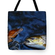 Fall Brown Trout Tote Bag
