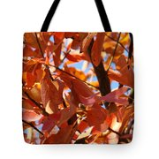 Fall Color 2 Tote Bag