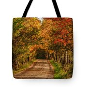 Fall Color Along A Dirt Backroad Tote Bag by Jeff Folger