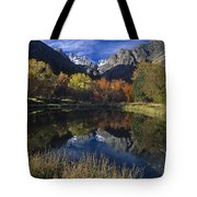 Fall Color And Reflection Below Middle Palisades Glacier California Tote Bag