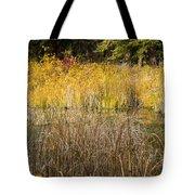 Fall Color At Banff Spring Basin Tote Bag