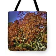 Fall Color At Biltmore Tote Bag