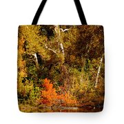 Fall Color Creekside Tote Bag