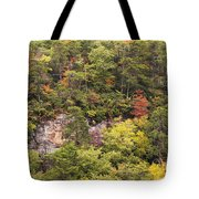 Fall Color In Little River Canyon Tote Bag
