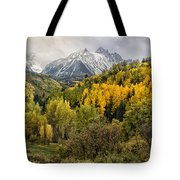 Fall Color In The Rockies Near Ouray Dsc07913 Tote Bag