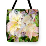 Fall Color On A Foggy Day 4 Tote Bag