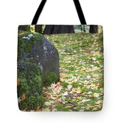 Fall Color Rocks Tote Bag