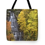 Fall Color Surrounds Chapel Falls On The Michigan Upper Peninsula Tote Bag