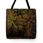 Fall Color Trees V9 Pano Tote Bag
