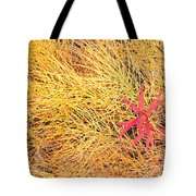 Fall Colored Horsetail And Fireweed  Tote Bag