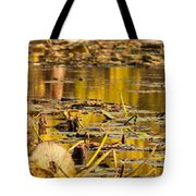 Fall Colored Pond Tote Bag