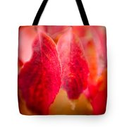 Fall Colors 0666 Tote Bag