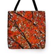 Fall Colors 2014-10 Tote Bag