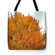 Fall Colors 2014-11 Tote Bag