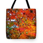 Fall Colors 2014-4 Tote Bag