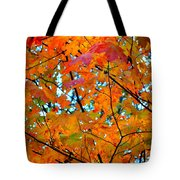 Fall Colors 2014-5 Tote Bag