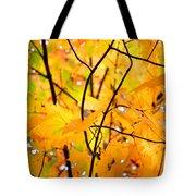 Fall Colors 2014-7 Tote Bag