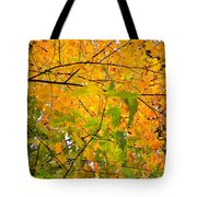 Fall Colors 2014-8 Tote Bag