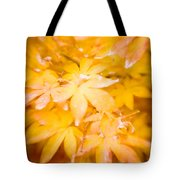 Fall Colors 6664 Tote Bag
