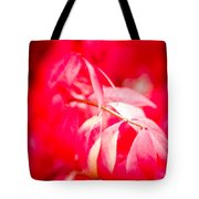 Fall Colors 6669 Tote Bag