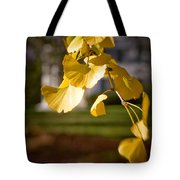 Fall Colors 6737 Tote Bag