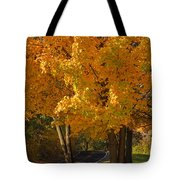 Fall Colors Tote Bag by Adam Romanowicz