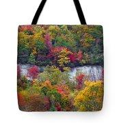 Fall Colors Along Tanasee Road Tote Bag