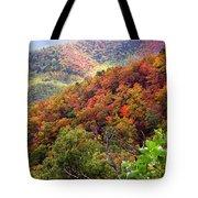 Fall Colors Along The Blueridge Tote Bag