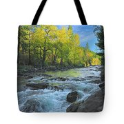 Fall Colors And The Little Salmon River Tote Bag