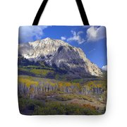 Fall Colors At Gunnison National Forest Tote Bag