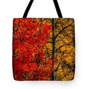 Fall Colors Dp Tote Bag