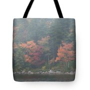 Fall Colors In Acadia National Park Maine Img 6483 Tote Bag