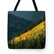 Fall Colors In Aspen Colorado Tote Bag