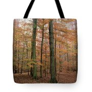 Fall Colors In Catoctin Mt. Park Tote Bag
