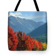 Fall Colors In Joseph Or Tote Bag