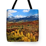 Fall Colors In Ridgway Colorado Tote Bag