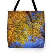 Fall Colors In The Sky  Tote Bag