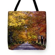 Fall Colors Near Sister Bay Tote Bag