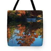 Fall Colors Water Reflection Tote Bag by Robert D  Brozek