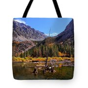 Fall Colours Reflection Tote Bag