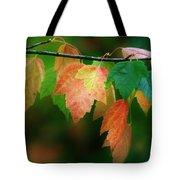 Fall Comes Tote Bag