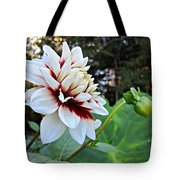 Fall Dahlia Tote Bag