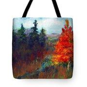 Fall Day Tote Bag