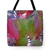 Fall Dogwood Leaf Colors 1 Tote Bag