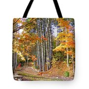 Fall Driveway And Coco The Dog Tote Bag