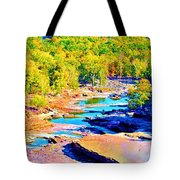 Fall Drought @ Ashokan Tote Bag