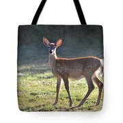 Fall Fawn Tote Bag
