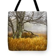 Fall Ferns And Fog Tote Bag