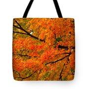 Fall Fiesta Tote Bag