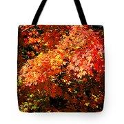 Fall Foliage Colors 21 Tote Bag